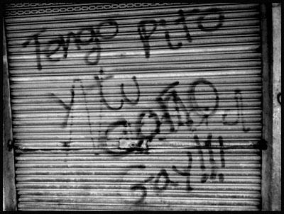 Tengo Pito y Tu Coño Gay!!!